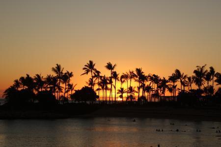 とんでもなかったハワイ旅行